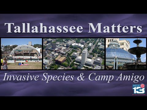 Tallahassee Matters - Invasive Species and Camp Amigo