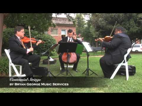 Bryan George Music Trio performs Billie Jean