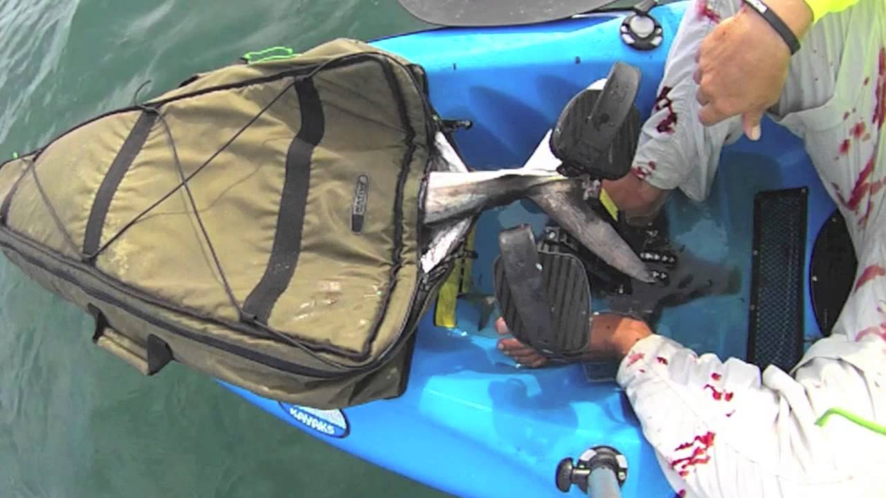 How To Store Your Catch Kayak Fishing Coolers Youtube