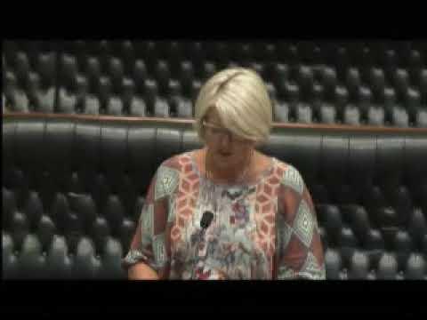 07 02 2018 LA PMS Catley Swansea Electorate Public Transport