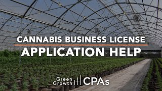 Cannabis Business License Application Help