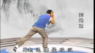 陳式太極老架Chen Style Tai Chi Old Frame (www.kongfu.
