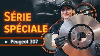Entretien PEUGEOT 307 (3A/C) - guide vidéo