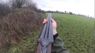 Fox and pheasant hunting in Ireland