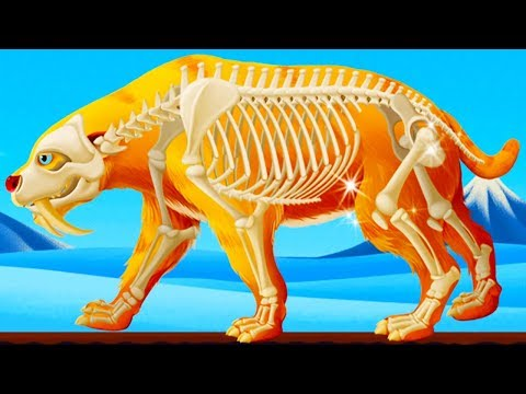 Dinosaur Park 2 - Fossil Dig & Discovery Dinosaur Games For KIds - Fun Educational Games By Yateland