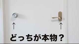 【検証】人はドアノブがあるとドアだと思い込むのか thumbnail