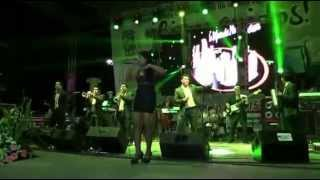 EXPO FERIA SAN PABLO HUIXTEPEC 2015  BAILE