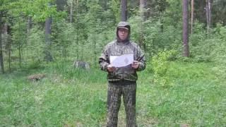 Обзор: летний костюм для охоты и рыбалки