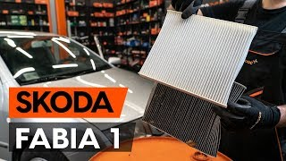 SKODA RAPID workshop manual - car video guide