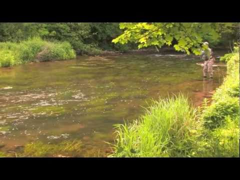 Cressbrook And Litton Flyfishers Water On The Derbyshire Wye