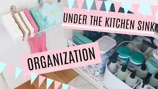 How to Organize Under the Kitchen Sink/ DIY Dollartree Organization