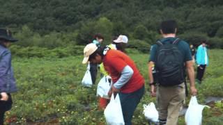 2014年8月9日、10日 岩手県八幡平市七時雨にて、三ツ星Villageよる初の...