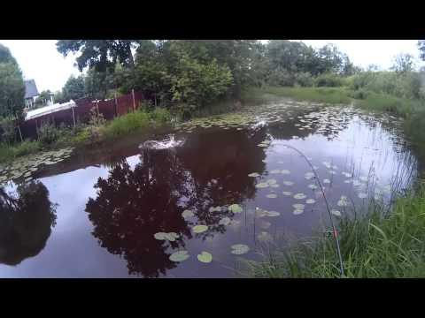 Щука в малых реках