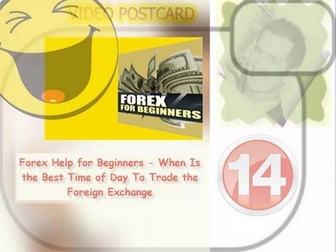 Forex trader profit percentage