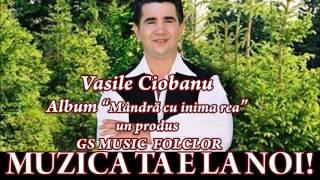 COLAJ ALBUM VASILE CIOBANU - MANDRA CU INIMA REA