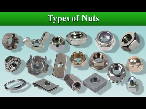 07 Types of Nuts