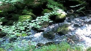 110723 La rivière d'Argent à Huelgoat.AVI
