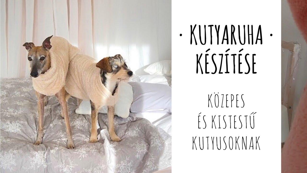 3cd277bae5 Kutyaruha készítése • DIY • közepes és kistestű kutyusoknak | Molnár Kinga