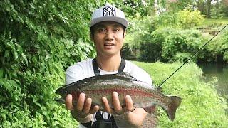 SERU! Mancing Di Jepang, rainbow trout lompat   Mancing Vlog BAli EP #62