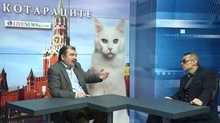 КОТАРАЦИТЕ: Политиците ни са гладни котенца