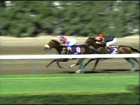 1992 Breeders Cup Juvenile Fillies Youtube