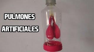 Como Hacer Pulmones con Botellas│APARATO RESPIRATORIO
