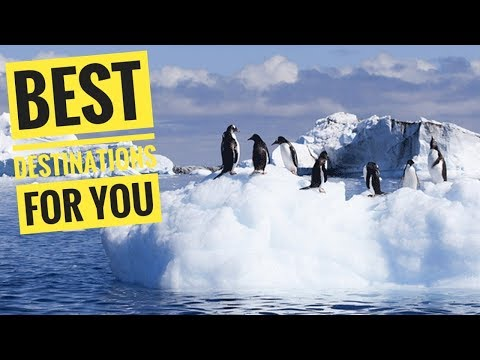 AMAZING!! Look Antarctica Expedition Cruise Tour