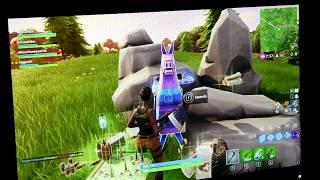 I Found A Llama!   Fortnite