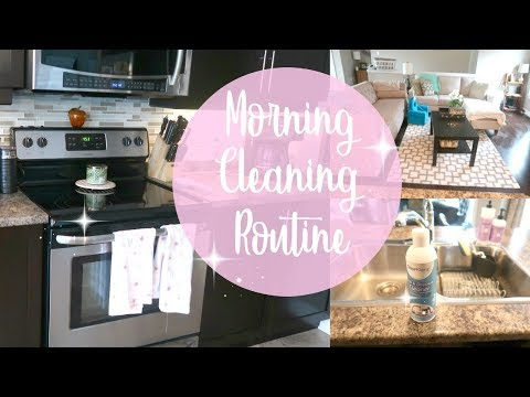Real Life Mommy Morning Cleaning Routine | Stay at Home Mom, Power Hour 2018 | OdorKlenz