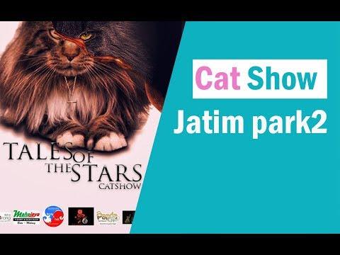 cat show jatim park2