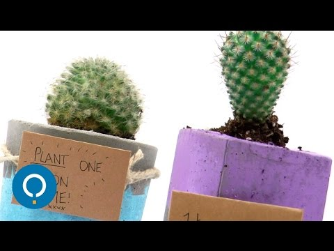 comment faire un pot de fleur en ciment ! - youtube