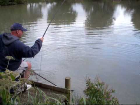 AVALON FISHERIES