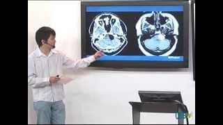 curso de radiologia aula de divulgao