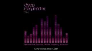 Deep Frequencies Vol. 1 (Drum & Bass Studio Mix September 2013)