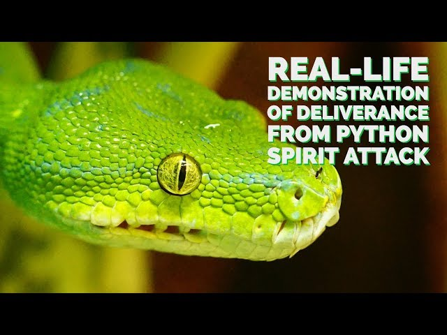 Real-Life Demonstration of Deliverance From a Python Spirit Attack