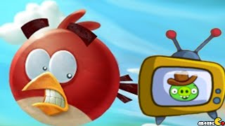 Angry Birds Seasons: Television Day!