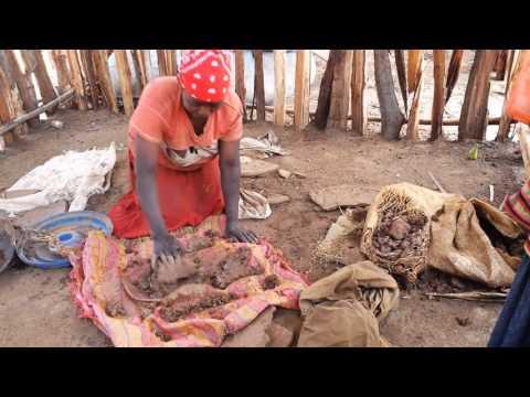 Voyage en  Ethiopie ( travel in ethiopia )