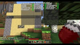 Minecraft PC-Team Bruno Server Review