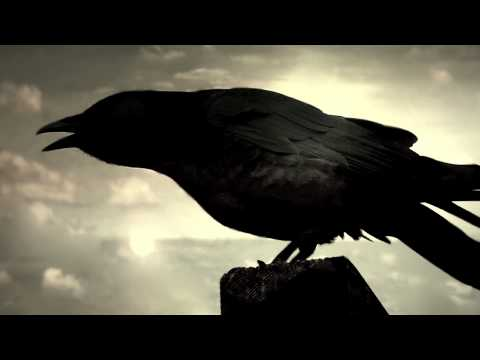 The Raven in HD by The Alan Parsons Project