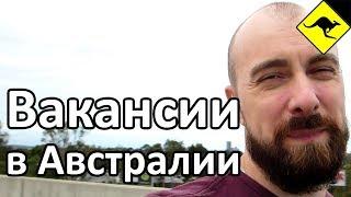 видео Вакансии. Водитель, работа водителем, Москва, Московская область, Job50.