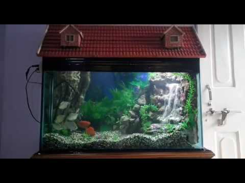 Diy waterfall aquarium youtube for Aquarium waterfall decoration