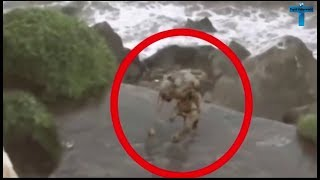 Top 10 Scary & Mysterious Things Caught On Camera  Most Unexplained Sighting