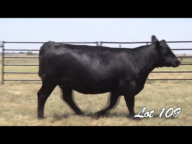 Pollard Farms Lot 109
