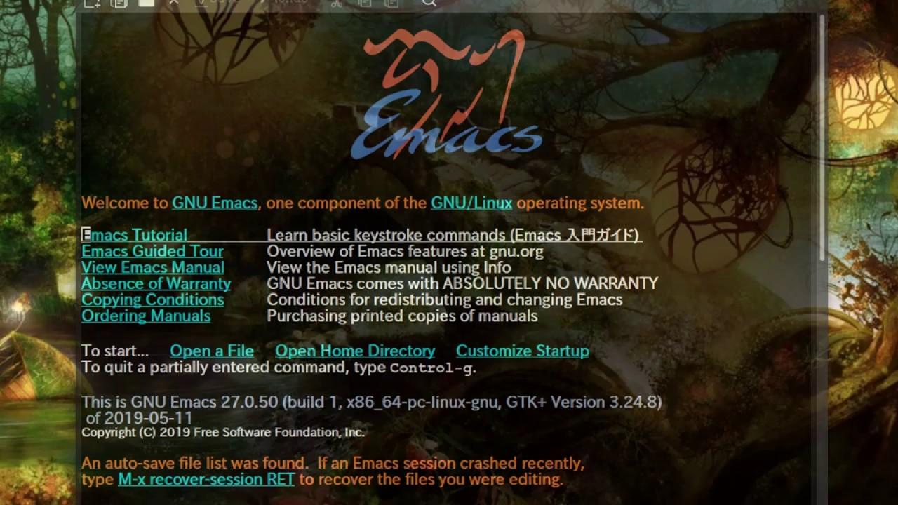なんちゃって Emacs Lisp Intro (21) www