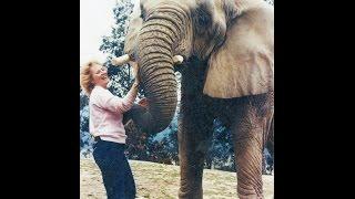 'I Talk to Animals' Documentary of Samantha Khury, Animal Communicator