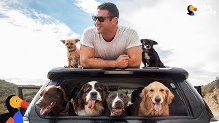 Man and SIX Rescue Dogs Travel The Country In His RV | The Dodo