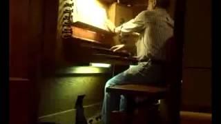 Pablo Bruna - Tiento de falsas de segundo tono