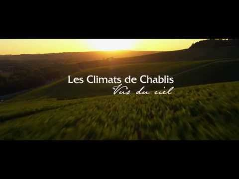 wine article The Chablis winegrowing region seen from the sky
