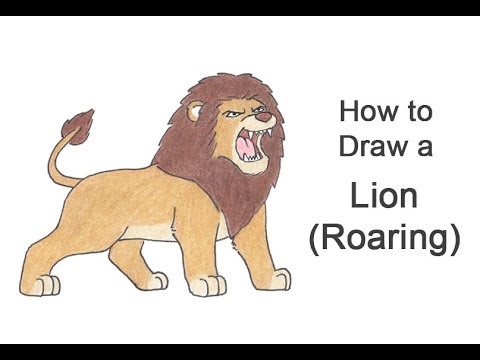 How To Draw A Lion Roaring Cartoon Youtube