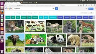TensorFlow image recognition and machine learning